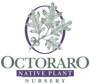 Octoraro Native Plant Nursery Logo